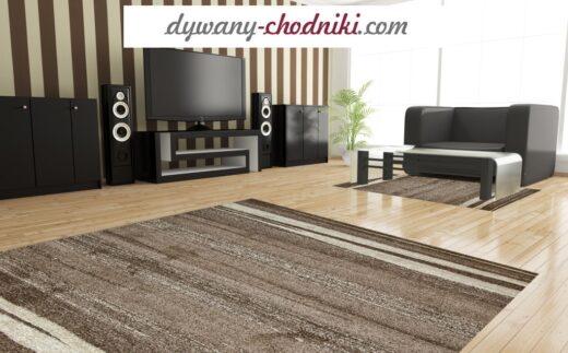 dwa dywany do salonu